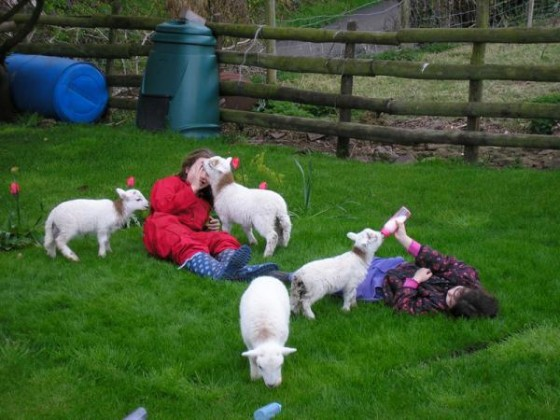 girls with pet lambs 003